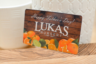 A grocery store gift card design with fresh fruit and a father's day holiday message